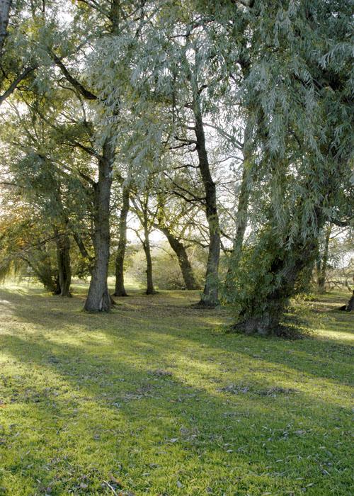pentre-mawr-park-abergele5-2003-2006-by-sion-jones